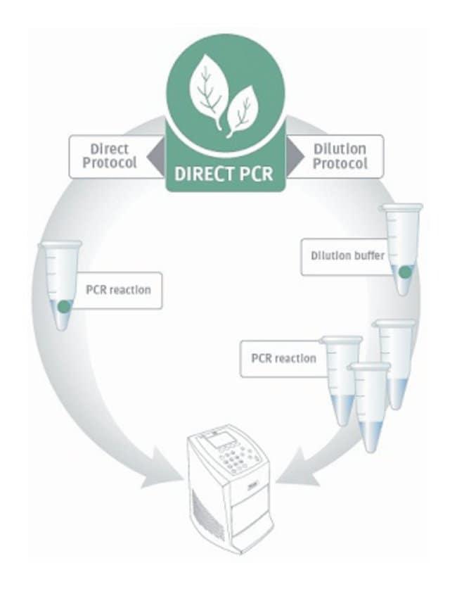 Thermo Scientific™Phire™ Plant Direct PCR Kit Ohne Probenentnahmegeräte; 500X20ul Reaktionen Direkte PCR-Reagenzien und -Kits