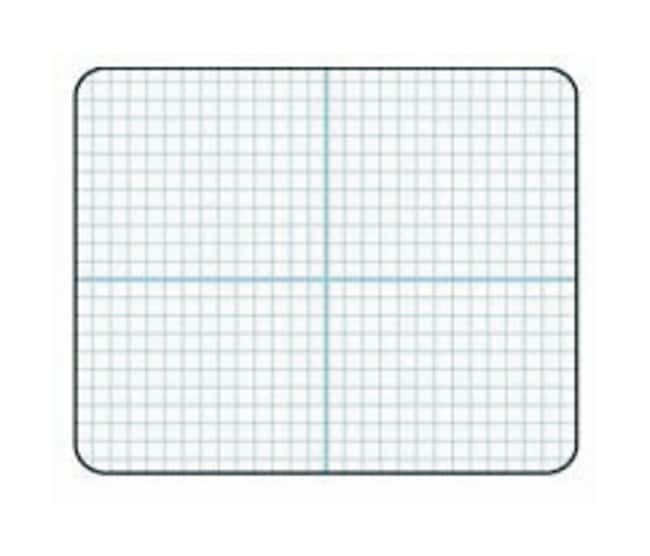 Write 'N Wipe Boards:Education Supplies:General Classroom Products