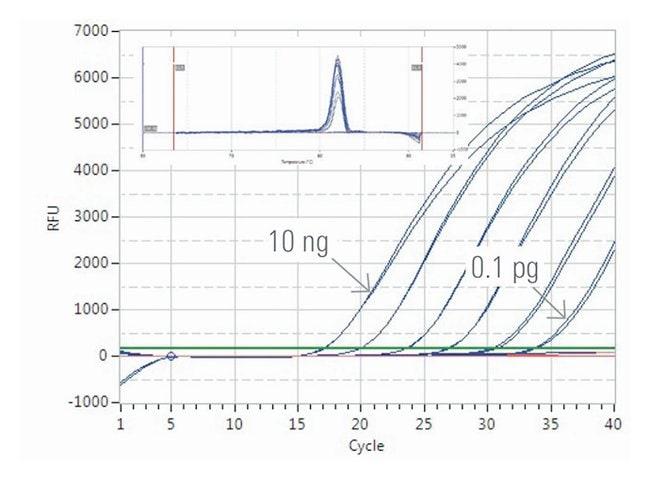 Thermo Scientific™Luminaris HiGreen qPCR Master Mix, high ROX: Bioreagents Chemicals