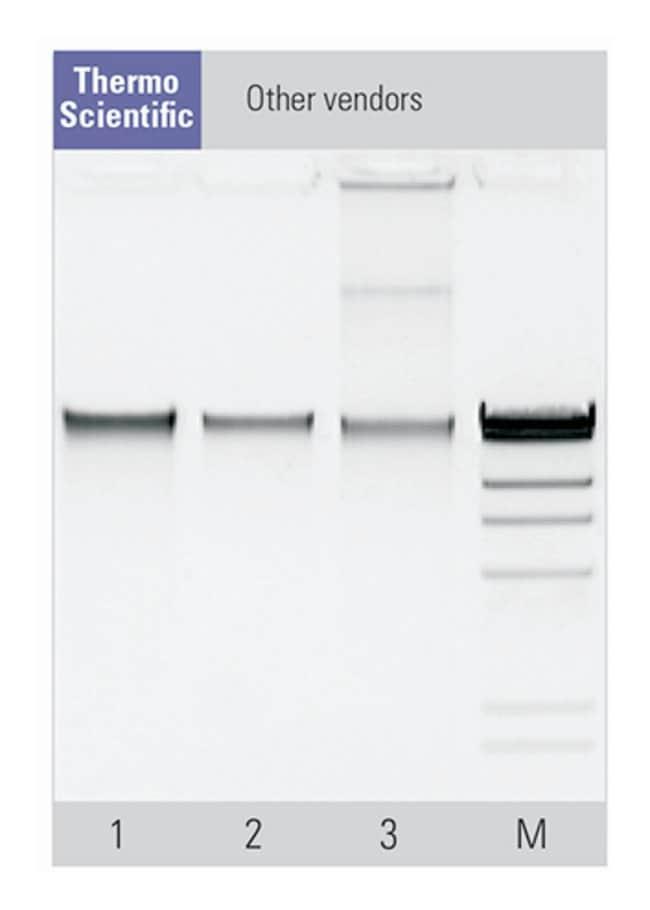Thermo Scientific™Kit d'ADN génomique de sang entier MagJET™ Pour 96préparations Thermo Scientific™Kit d'ADN génomique de sang entier MagJET™