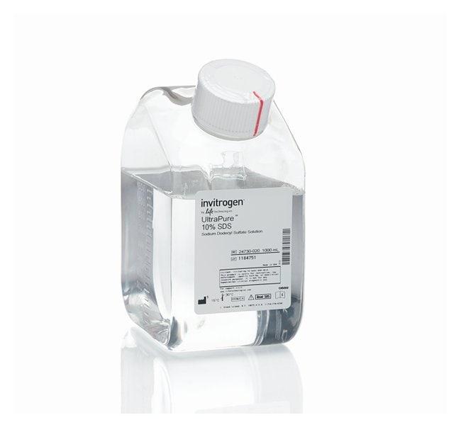 Invitrogen™UltraPure™ SDS Solution, 10%: Biochemicals and Reagents Life Sciences