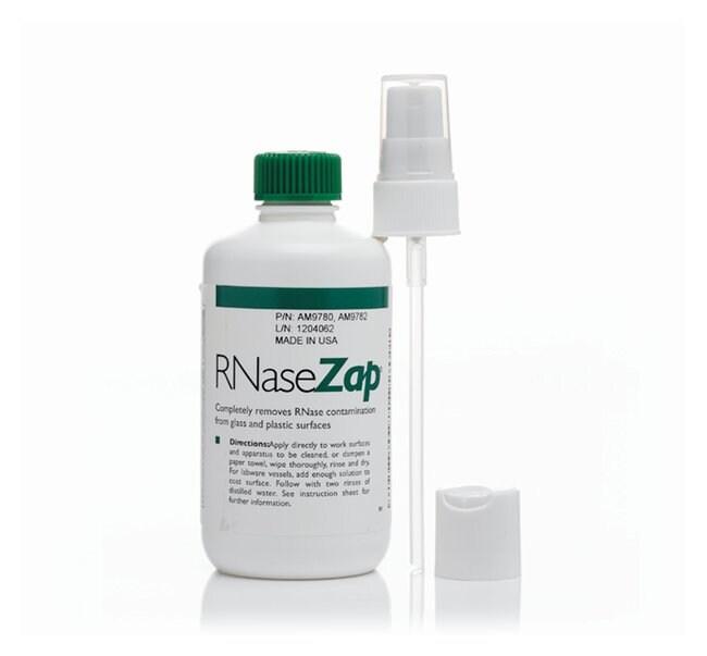 Invitrogen&trade;&nbsp;RNase<i>Zap</i>&trade; RNase Decontamination Solution