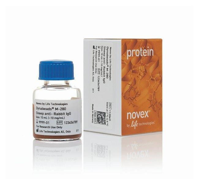 Invitrogen™Novex™ DYNAL™ Dynabeads™ M-280 Schaf-Anti-Kaninchen-IgG, polyklonal: Durchflusszytometrie Zellanalyse