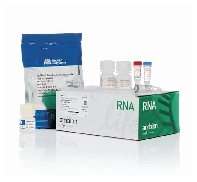 Confirming the RNAi-mediated mechanism of action of siRNA-based cancer therapeutics in mice