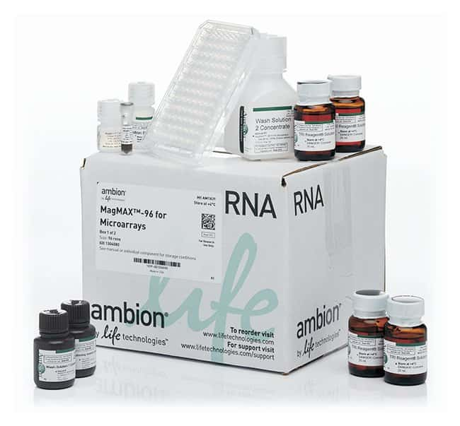 invitrogen magmax 96 for microarrays total rna isolation kit