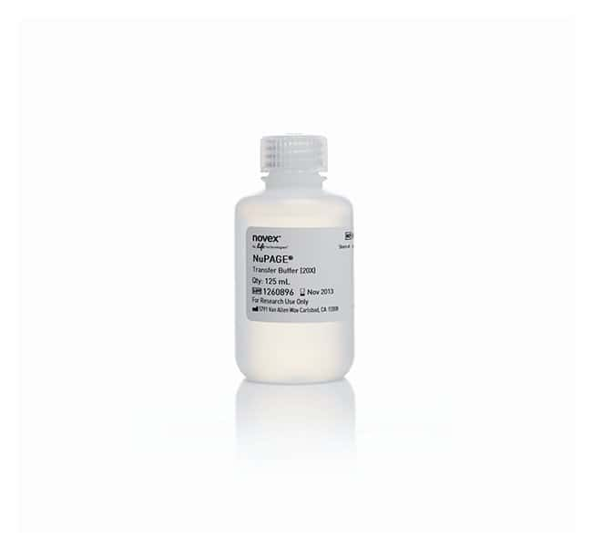 Invitrogen™ NuPAGE™ Transfer Buffer (20X)