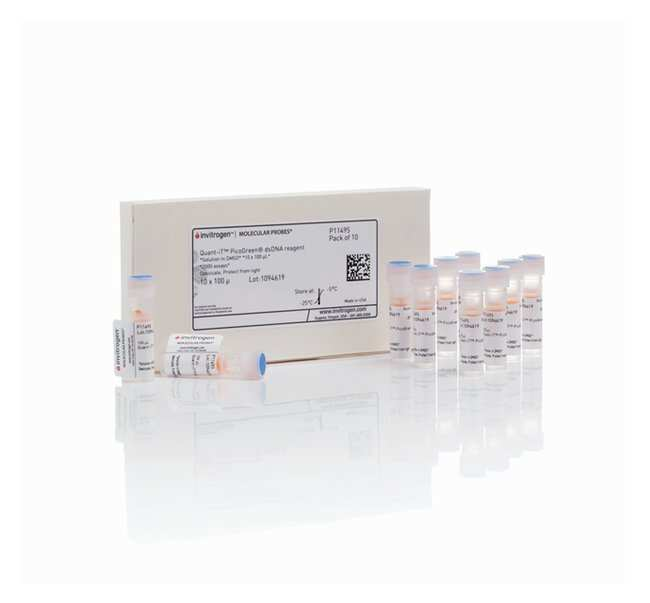 Invitrogen Quant-iT PicoGreen dsDNA Reagent  :Life Sciences:Biochemicals