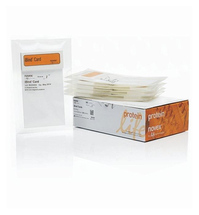 Invitrogen™iBind™ Cards: Electrophoresis Equipment Electrophoresis