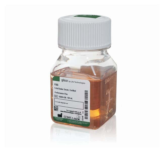 Gibco™ Fetal Bovine Serum, certified, United States