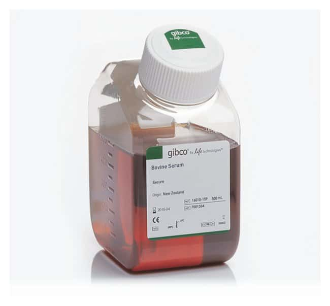 Gibco™ Bovine Serum, New Zealand origin: Foetal Calf and Other Sera Cell Culture