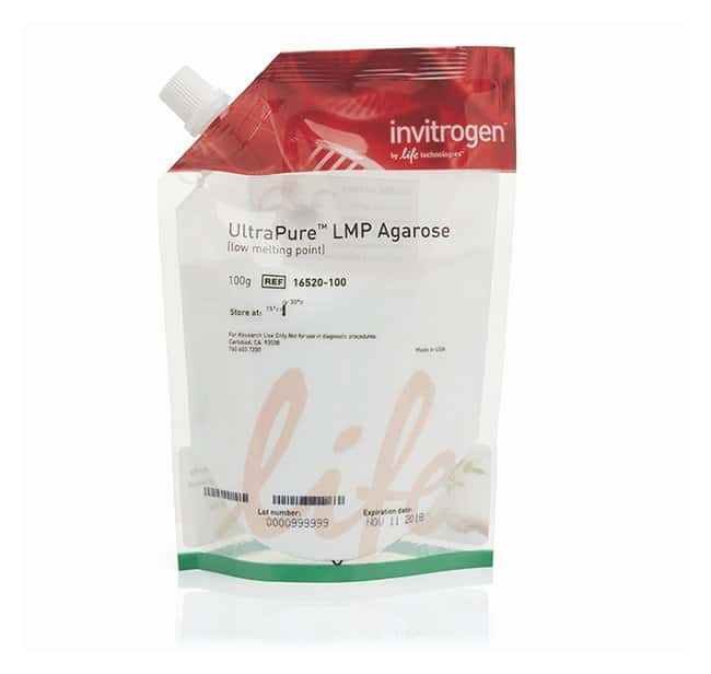 Invitrogen™ UltraPure™ Low Melting Point Agarose: Biochemicals and Reagents Life Sciences