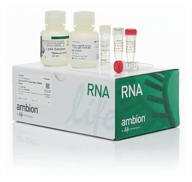 Invitrogen™Cell-to-CT™ Power S 1-stufiges Power SYBR Green Kit 400Präparate Invitrogen™Cell-to-CT™ Power S 1-stufiges Power SYBR Green Kit
