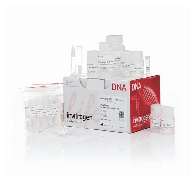 Invitrogen™PureLink™ HiPure Plasmid Miniprep Kit: Bioréactifs Sciences de la vie