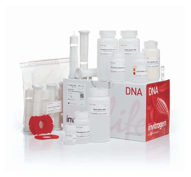 Invitrogen™PureLink™ HiPure Plasmid Filter Maxiprep Kit: Biochemicals and Reagents Life Sciences