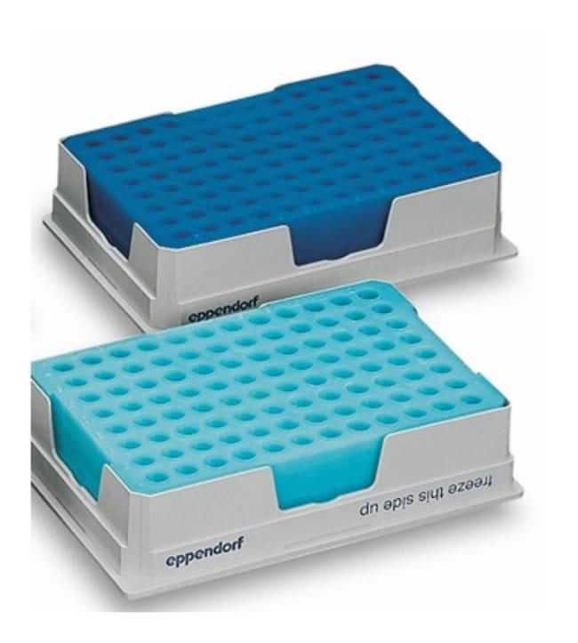 Eppendorf PCR Cooler  Blue:Life Sciences