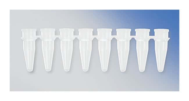 Axygen™ 8-Strip PCR Tubes, 0.2 mL: PCR and qPCR Molecular Biology Reagents and Kits