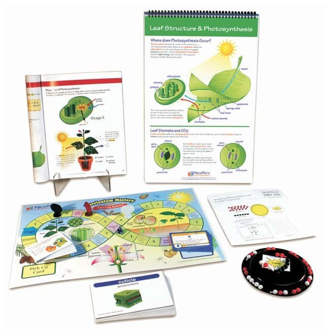 NewPath Learning Photosynthesis and Cellular Respiration Curriculum Middle