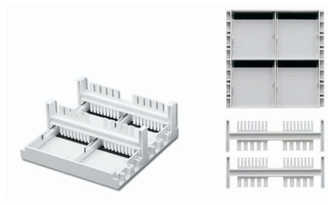 FisherbrandMini Gel System Casting Set:Gel Electrophoresis Equipment and