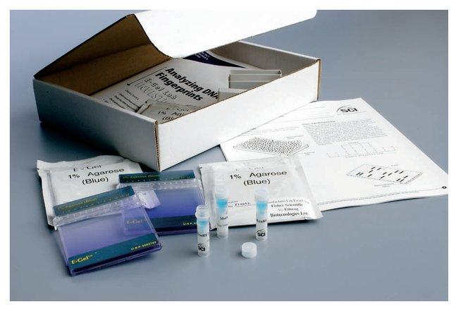 E-Gel Analyzing DNA Fingerprints :Teaching Supplies:Biotechnology