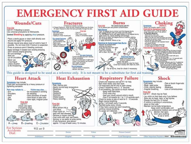 Dramatic image throughout first aid guide printable