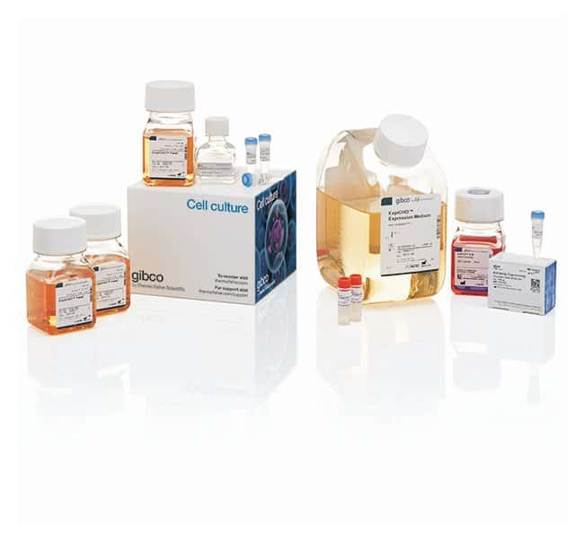 Gibco™ExpiCHO™ Expression System Kit Complete starter kit Custom Peptide Synthesis and Protein Expression