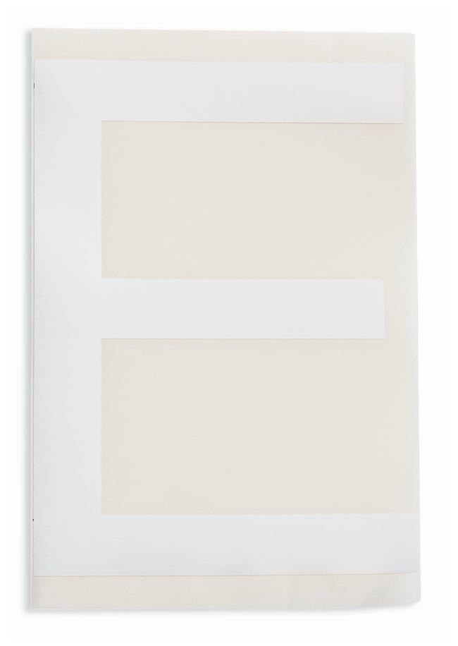 Brady ToughStripe Die-Cut Floor Marking Letter E Color: White:Racks, Boxes,