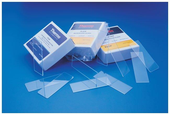 Fisherbrand Economy Plain Glass Micro Slides  Plain Microscope Slides,