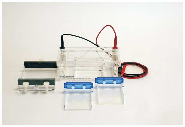 CBS ScientificHorizontal Mini-Gel Productivity Packages