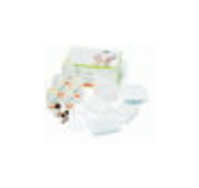 Cytiva (Formerly GE Healthcare Life Sciences)illustra™ RNAspin 96 RNA Isolation Kit 4 x 96 preps Cytiva (Formerly GE Healthcare Life Sciences)illustra™ RNAspin 96 RNA Isolation Kit