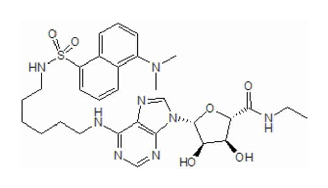 Tocris Bioscience Dansyl-NECA 1mg:Life Sciences
