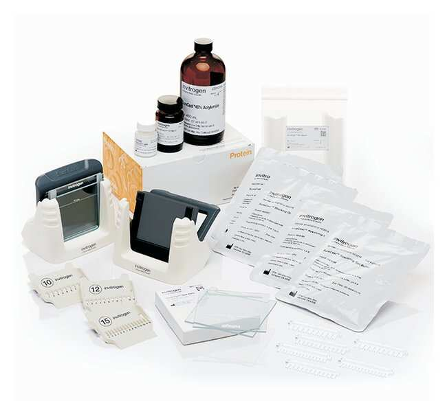 Invitrogen™SureCast™ Gel Handcast Bundle A - Hardware and Reagents Casting equipment, accessories and reagents bundle Vertical Gel Systems