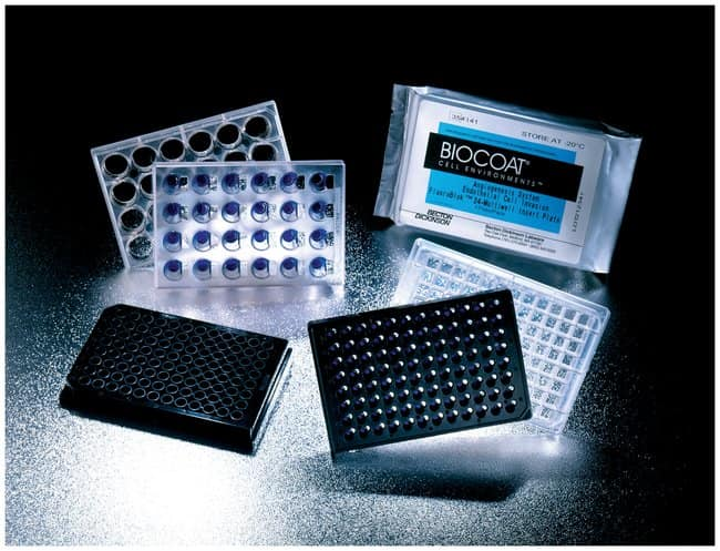 Corning™BioCoat™ Angiogenesesystem für die Endothelzellinvasion 5/Packung Corning™BioCoat™ Angiogenesesystem für die Endothelzellinvasion