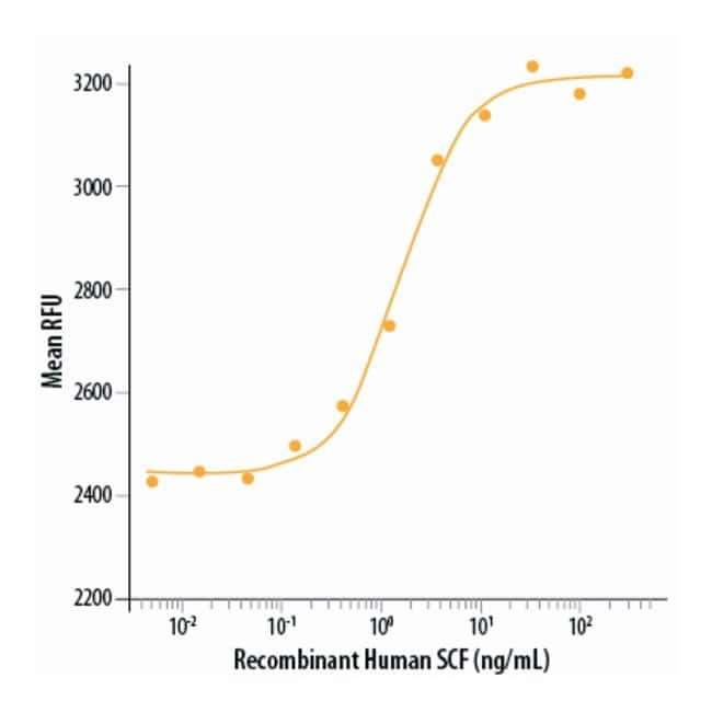 R&D Systems™ Human SCF Recombinant Protein 50ug; Carrier Free R&D Systems™ Human SCF Recombinant Protein