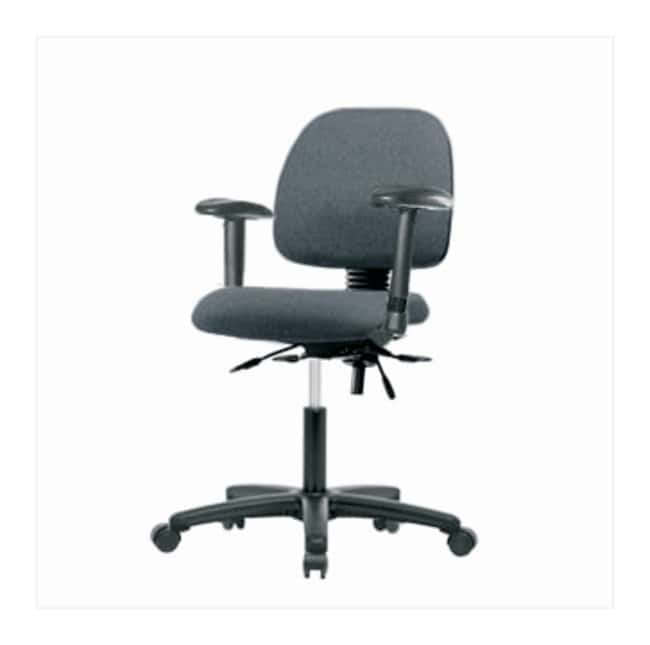 Fisherbrand Low-Form Fabric Chairs without Arms, Desk Height  Adjustable