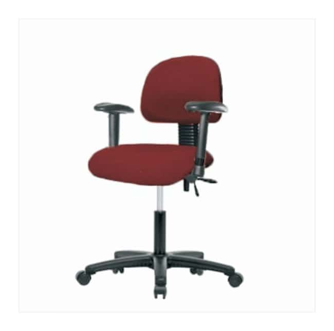 Fisherbrand Fabric Task Chair with Standard Back  Nylon Reinforced Fiberglass