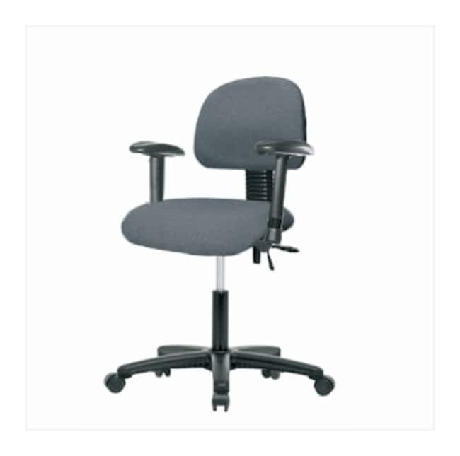 FisherbrandFabric Chair - Desk Height with Adjustable Arms and Casters