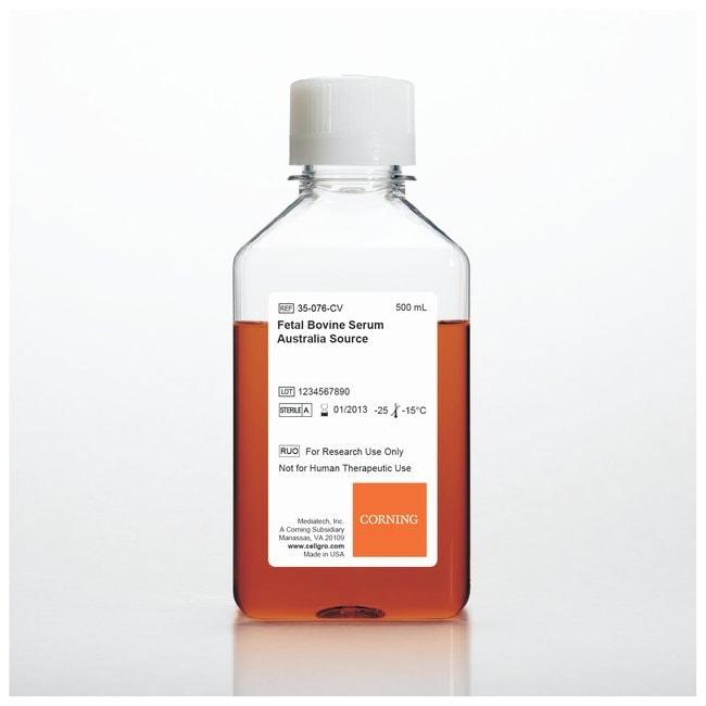 Corning™Fetal Bovine Serum, Australia Origin Fetal Bovine Serum, Australia origin; 500mL Sérums bovins fœtaux