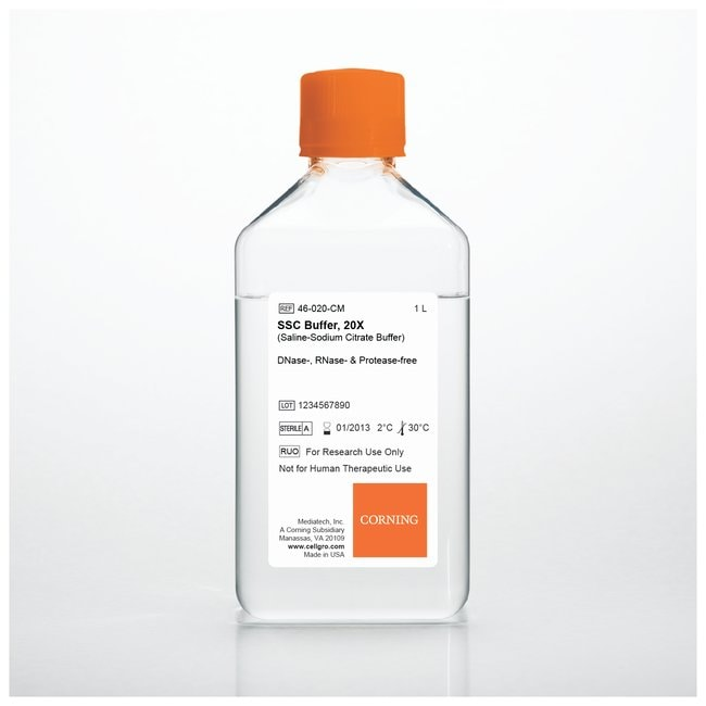 Corning Molecular Biology Reagents  SSC Buffer 20X; 6 x 1L:Cell Culture
