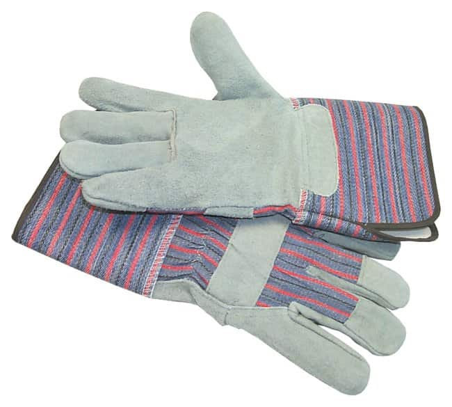 Fisherbrand Standard Leather Palm Gloves:Gloves, Glasses and Safety:Gloves