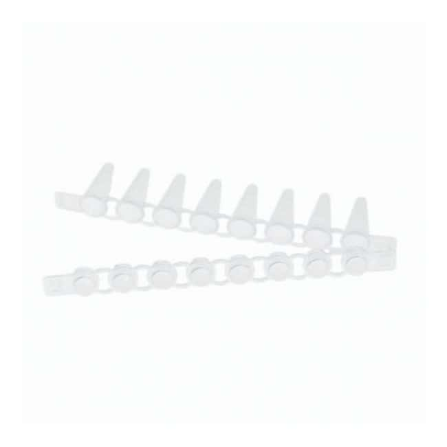 Eppendorf™ PCR Tube Strips and Domed Cap Strips, 0.1mL With domed cap strips PCR Tubes