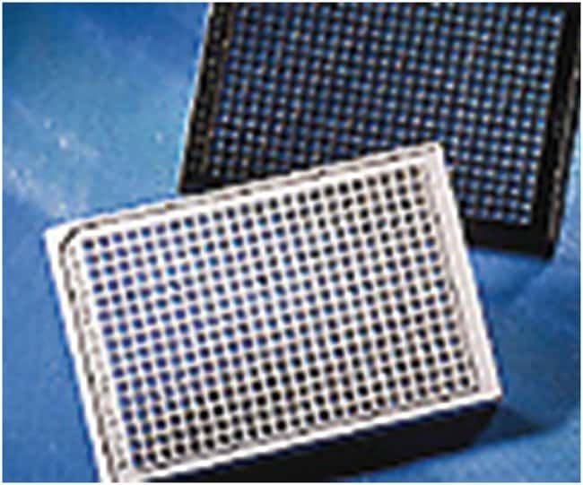 Corning384-Well, Cell Culture-Treated, Flat-Bottom, Low Flange Microplate