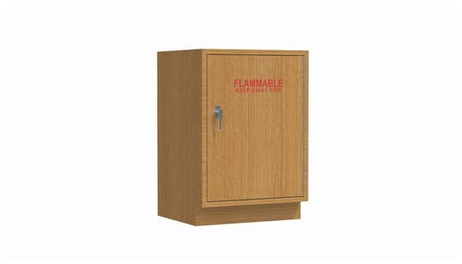 Mott ManufacturingWood Casework Standing Height Specialty Cabinet, Solvent