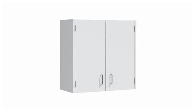 Mott ManufacturingSteel Casework Wall Cabinet, Hinged Door Unit:Furniture:Storage
