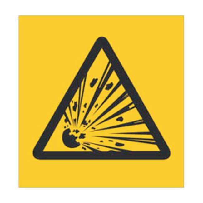 Brady RTK Pictogram Labels, Explosive Size: W x H: 1.9 x 1.9cm (0.75 x