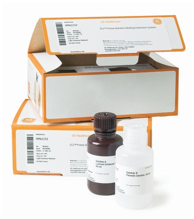 GE Healthcare Amersham ECL Prime Western Blotting Detection Reagent  For