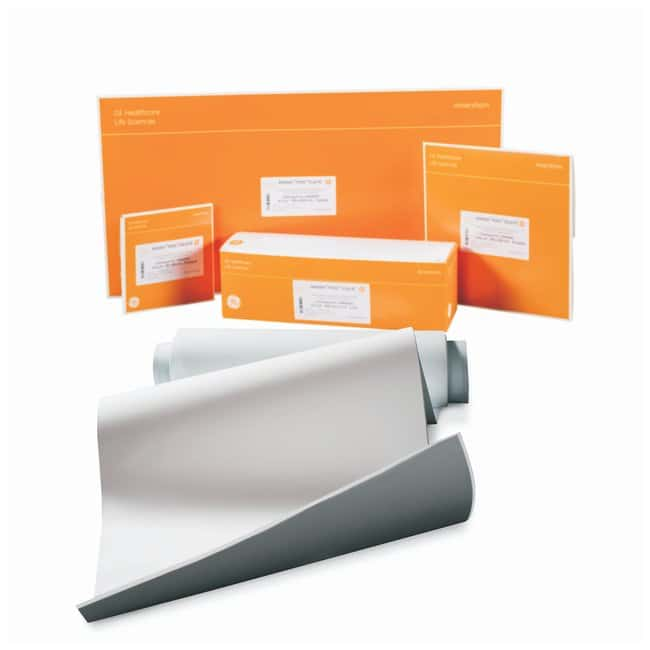 Cytiva (Formerly GE Healthcare Life Sciences) Amersham™ Hybond™ PVDF Membranes: Sheets 0.2μm; Sheets; 8 x 9cm; Pk. of 25 Cytiva (Formerly GE Healthcare Life Sciences) Amersham™ Hybond™ PVDF Membranes: Sheets