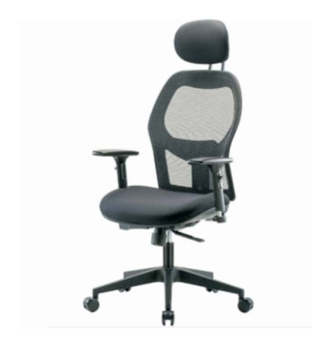 Fisherbrand Executive Mesh Chair  Head Rest; 3D Adjustable Arms:Furniture,