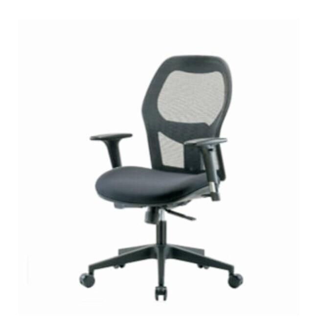 Fisherbrand Executive Mesh Chair  Standard Adjustable Arms:Furniture, Storage,