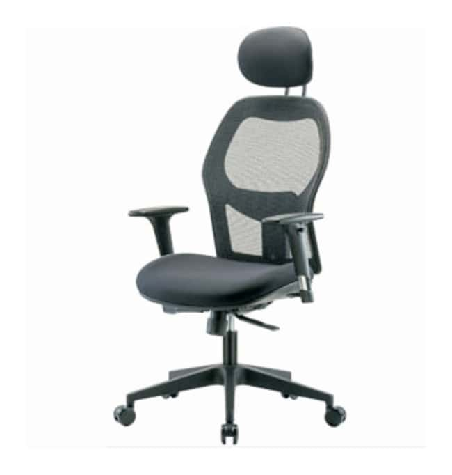 Fisherbrand Executive Mesh Chair  Head Rest; Standard Adjustable Arms:Furniture,
