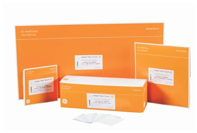 Cytiva (Formerly GE Healthcare Life Sciences) Membrane in nitrocellulosa Amersham™ Protran™ NC: Fogli 0.45um; Sheets; 10 x 10cm; Pk. of 10 Cytiva (Formerly GE Healthcare Life Sciences) Membrane in nitrocellulosa Amersham™ Protran™ NC: Fogli